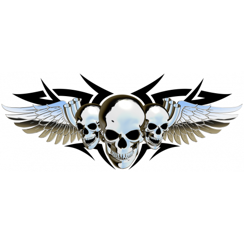 Winged skulls chrome tarra