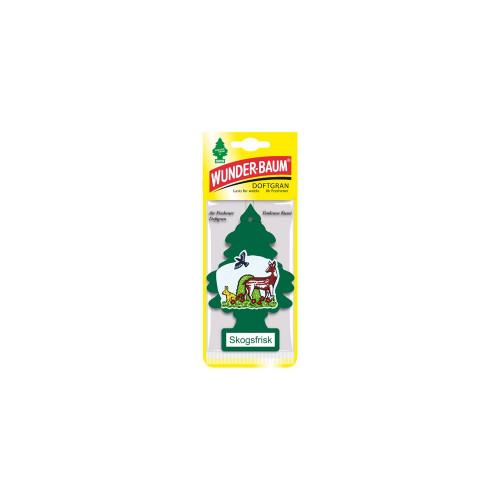 Wunder-Baum Metsänraikas